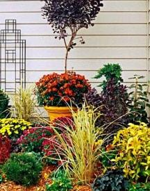 Buy Garden & Home Decor Products Online At Best Price