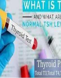 Thyroid Profile Test Cost Free