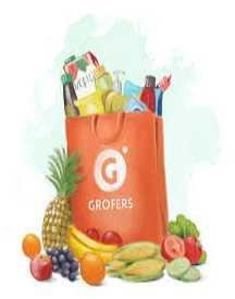 Shop Groceries At Grofers & Get Free Fruits & Vegetables