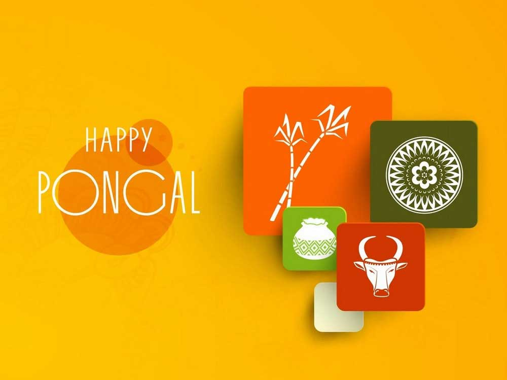 Pongal Shopping Offers